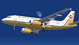 Royal Brunei - Airlines Airbus A319-132 - [V8-RBP]